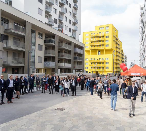 Das Urban-Gardening-Quartier Erlaaer Flur im 23. Wiener Gemeindebezirk ermöglicht eine aktive Mitgestaltung guter Nachbarschaft. Das Diakoniewerk ist mit einer Wohnkoordination dabei.